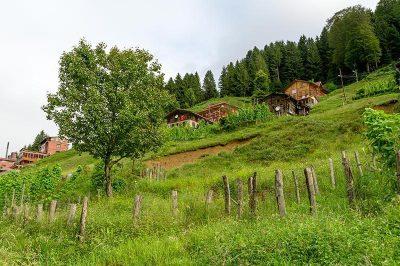 rize ayder yaylasi dag evleri 400x266