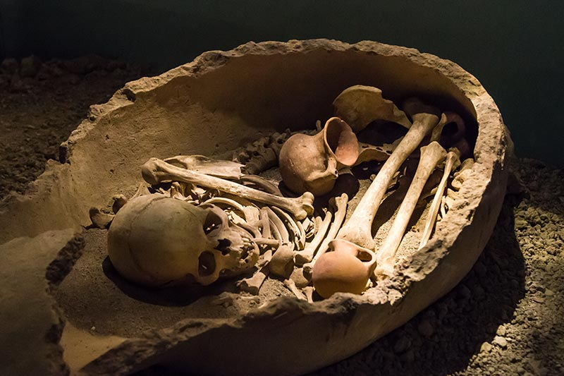 antalya arkeoloji muzesi kemikler