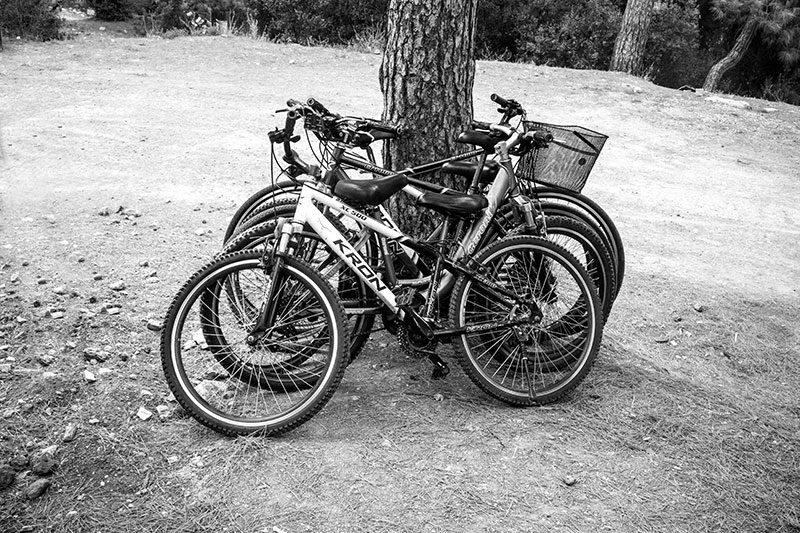 buyukada bisiklet turlari