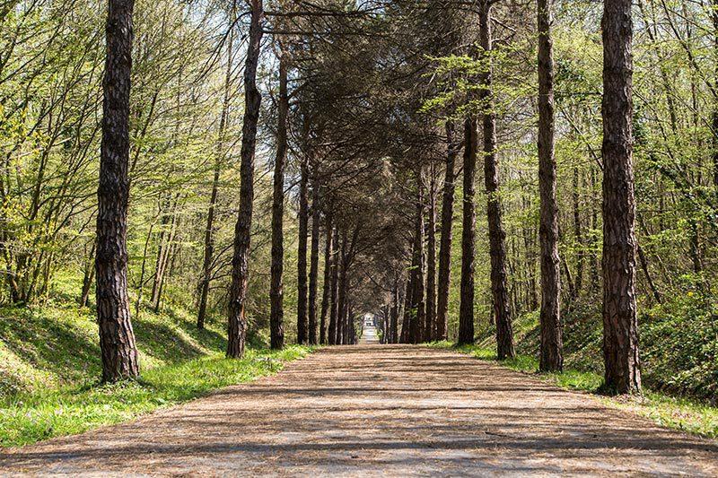 ataturk arboretumu gezi yazisi