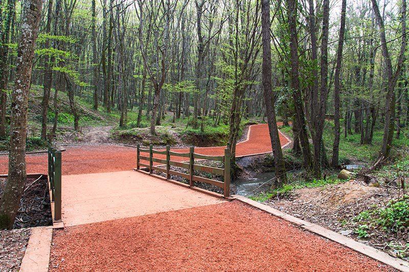 belgrad ormani neset suyu tabiat parki