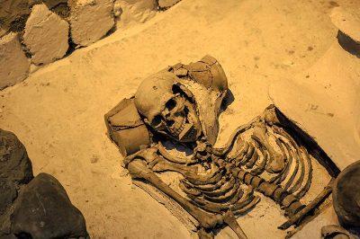 antakya arkeoloji muzesi mezari 400x266
