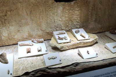 paleolitik cag buluntulari 400x266