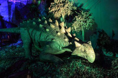 ahhaa bilim merkezi dinozor salonu 1 400x266