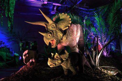ahhaa bilim merkezi dinozor salonu 2 400x266