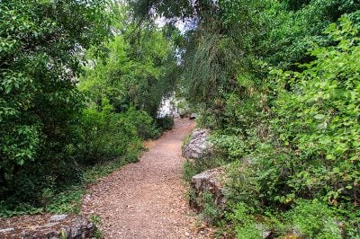 termessos antik kenti kral yolu 400x266
