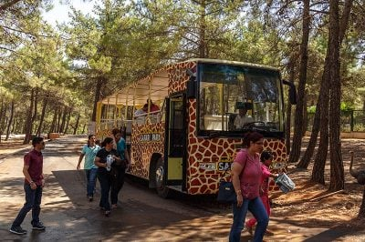 gaziantep hayvanat bahcesi safari park 400x266