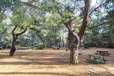 antalya kursunlu selalesi tabiat parki piknik alani 400x266