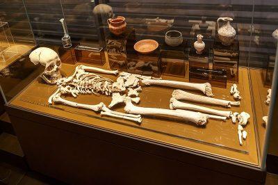 st paul yeralti mezarlari muzesi insan iskeleti 400x266