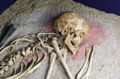 prag ulusal muze insan iskeleti 400x266