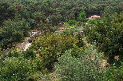 antalya hayvanat bahcesi kent ormani manzarasi 400x266