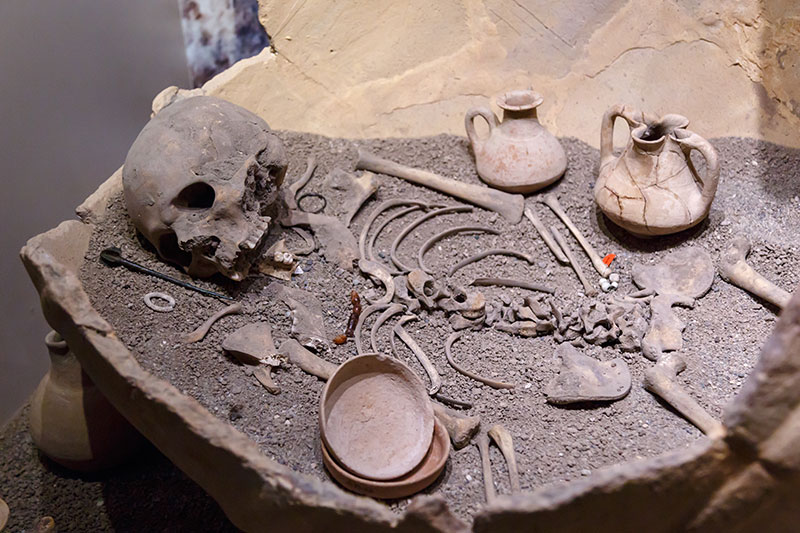 eskisehir arkeoloji muzesi kup icinde iskelet