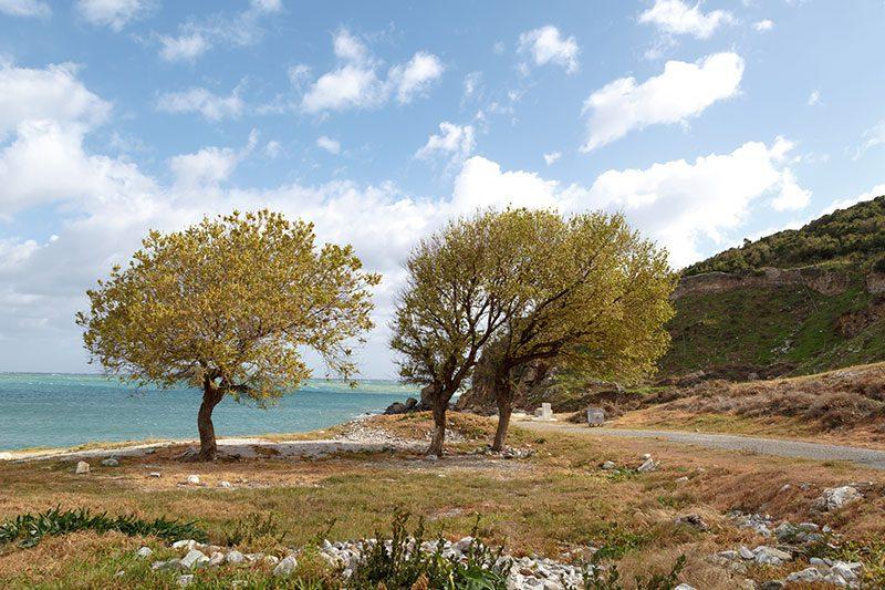 mersin anamur anemurium antik kenti deniz kenari