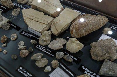 mersin arkeoloji muzesi kayaclar 400x266