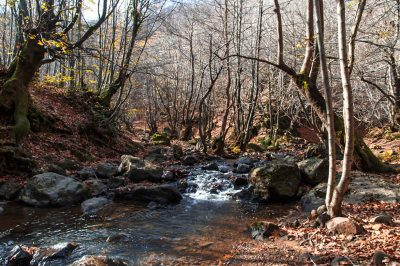 yalova erikli cifte selaleler trekking yolu 400x266