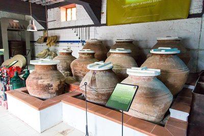 ayvacik adatepe zeytinyagi muzesi gezilecek yerler 400x266