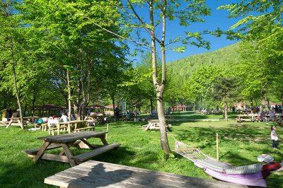 duzce guzeldere selalesi tabiat parki piknik alani 400x266