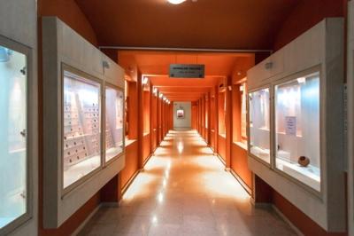 sinop arkeoloji muzesi arkeolojik eserler 400x266