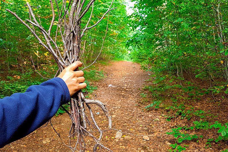 kartepe kuzu yaylasi tabiat parki odun toplama