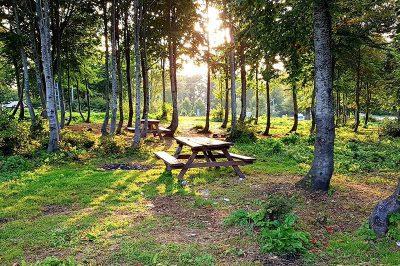kartepe kuzuyayla tabiat parki piknik alani 400x266