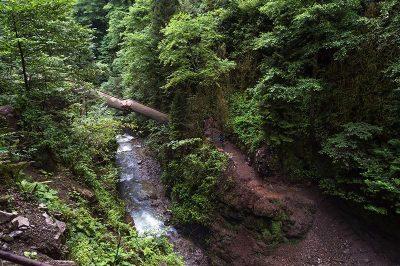 rize palovit selalesi basamaklari gecis koprusu 400x266