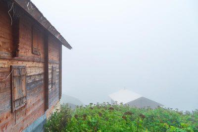 rize pokut yaylasi gezilecek yerler 400x266