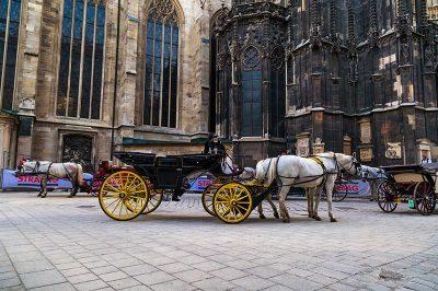viyana aziz stephan katedrali meydan faytonlari 400x266