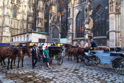 viyana aziz stephan katedrali meydani 400x266