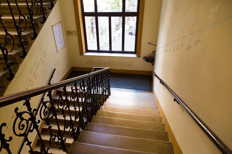 viyana sigmund freud muzesi bina merdivenleri