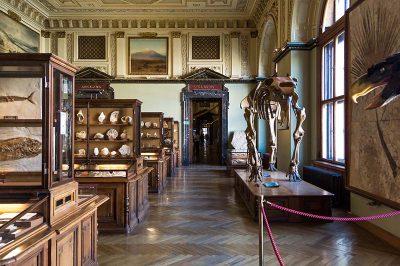 viyana doga tarihi muzesi gezilecek muzeler 400x266