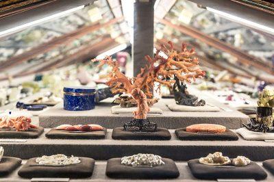 viyana doga tarihi muzesi mineral salonu 400x266