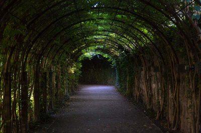 salzburg mirabell sarayi bahce tuneli 400x266