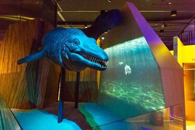konya bilim merkezi tetis denizi fosili 400x266