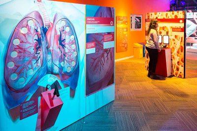 konya bilim merkezi vucudumuz galerisi 400x266