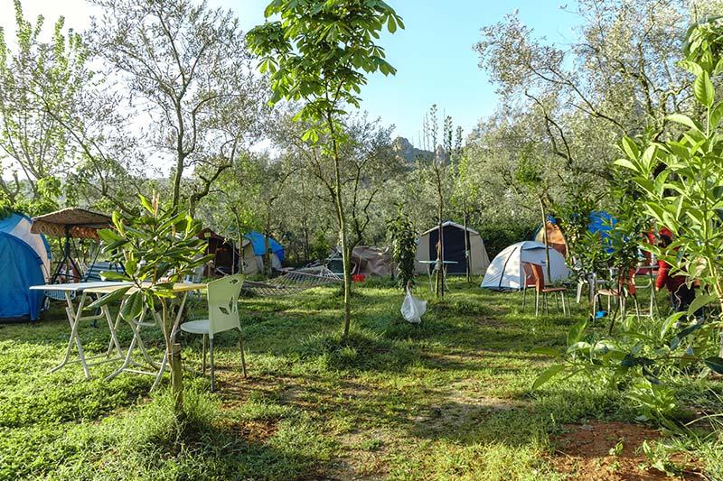iznik doga muhit camping kamp alani