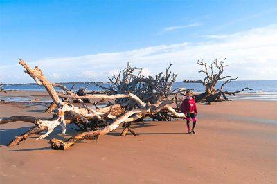 georgia driftwood plaji gorulecek yerler 400x266